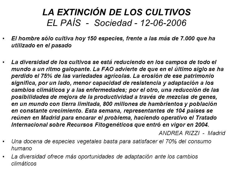 LA EXTINCIÓN DE LOS CULTIVOS EL PAÍS - Sociedad - 12-06-2006