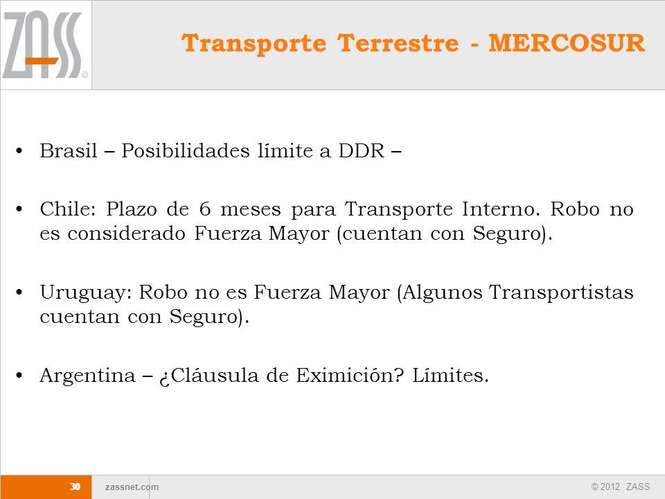 Transporte Terrestre - MERCOSUR