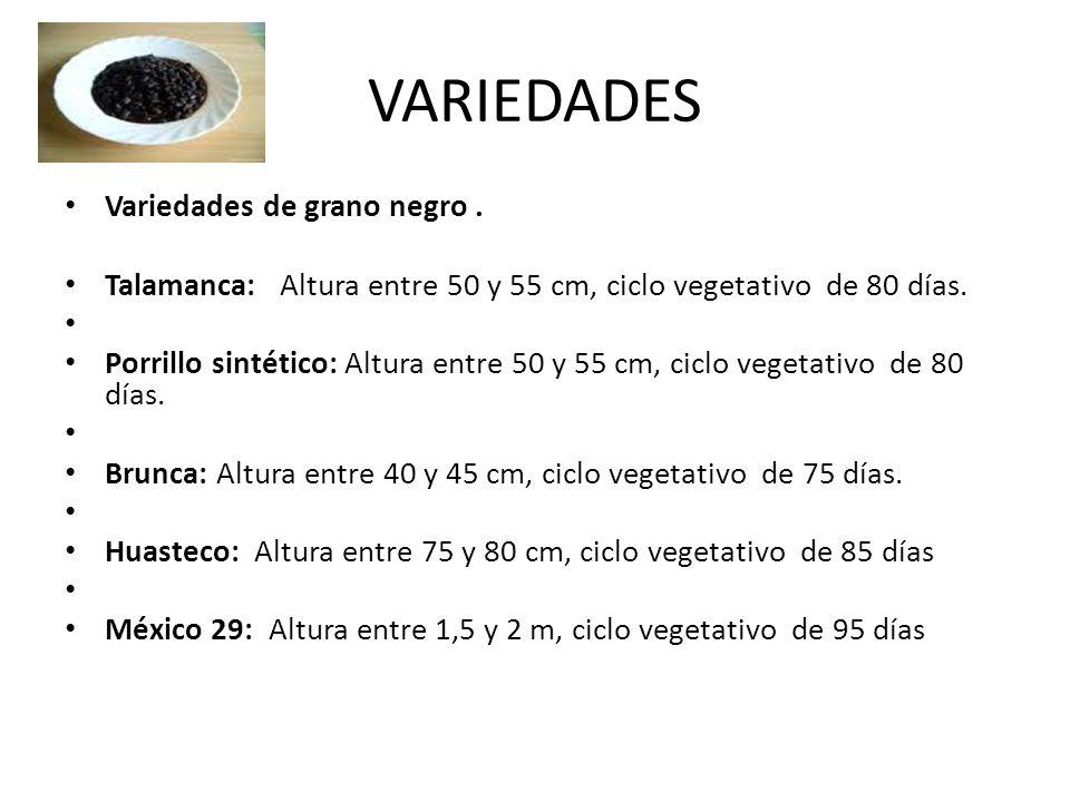 VARIEDADES Variedades de grano negro .