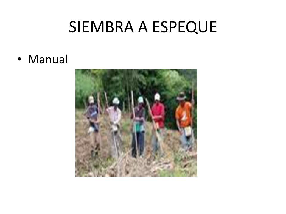 SIEMBRA A ESPEQUE Manual