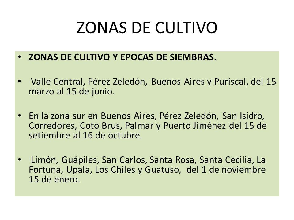 ZONAS DE CULTIVO ZONAS DE CULTIVO Y EPOCAS DE SIEMBRAS.