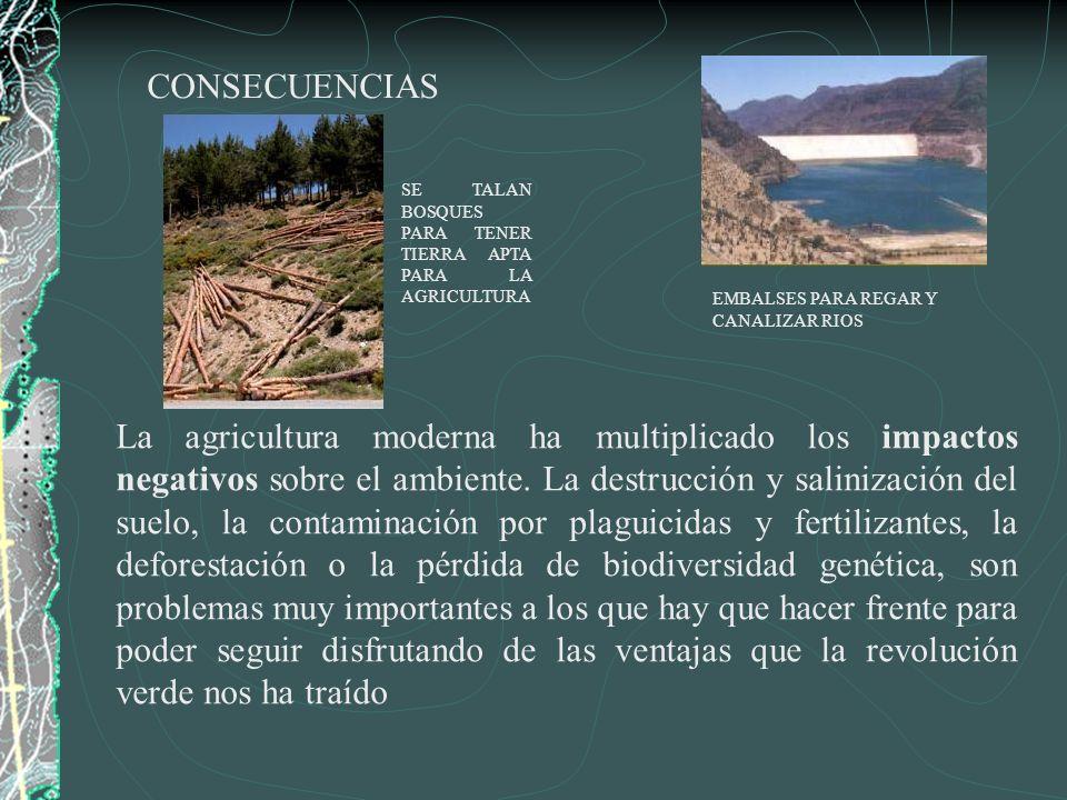 CONSECUENCIAS SE TALAN BOSQUES PARA TENER TIERRA APTA PARA LA AGRICULTURA. EMBALSES PARA REGAR Y CANALIZAR RIOS.
