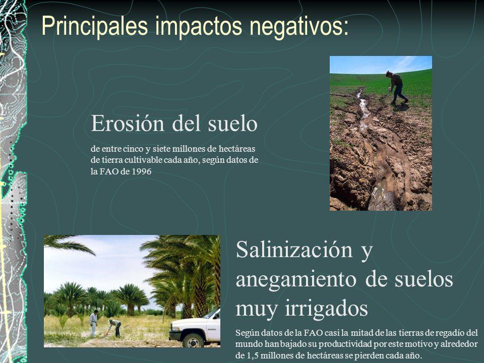Principales impactos negativos: