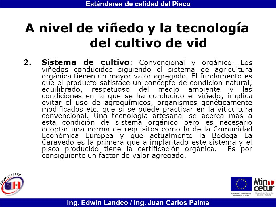 A nivel de viñedo y la tecnología del cultivo de vid