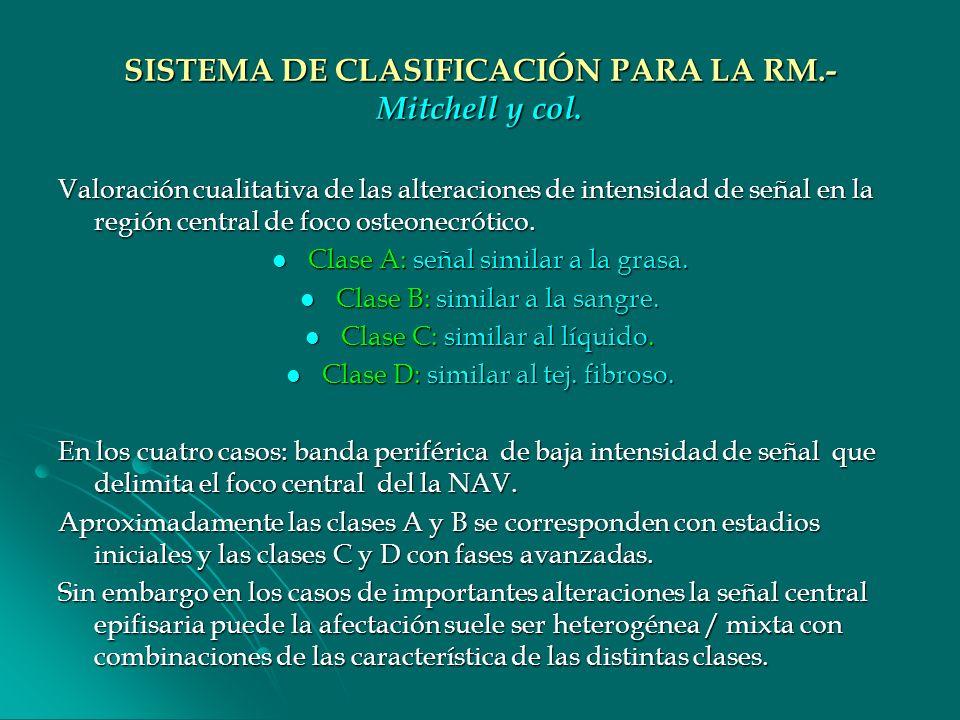 SISTEMA DE CLASIFICACIÓN PARA LA RM.- Mitchell y col.