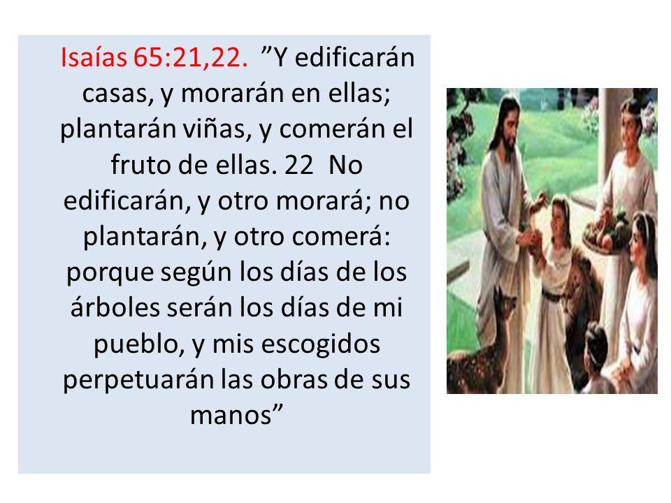 Isaías 65:21,22. Y edificarán casas, y morarán en ellas; plantarán viñas, y comerán el fruto de ellas.