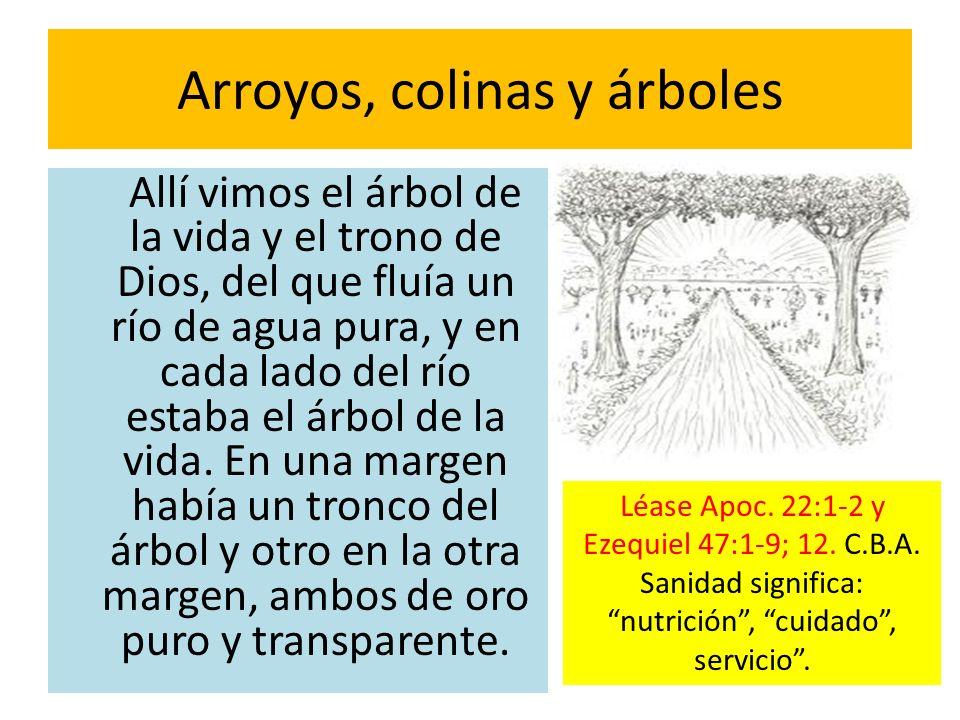 Arroyos, colinas y árboles