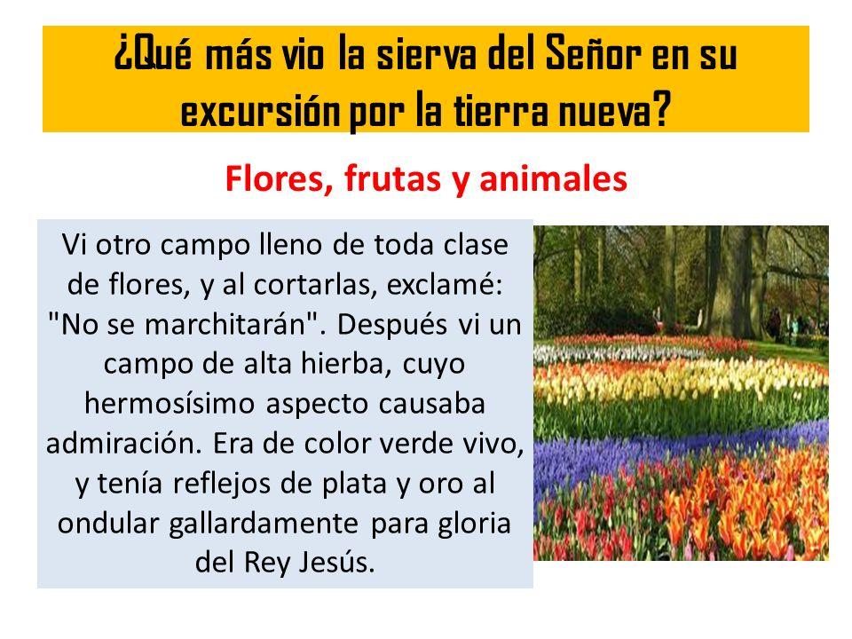 ¿Qué más vio la sierva del Señor en su excursión por la tierra nueva