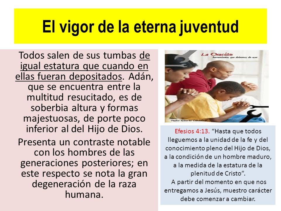 El vigor de la eterna juventud