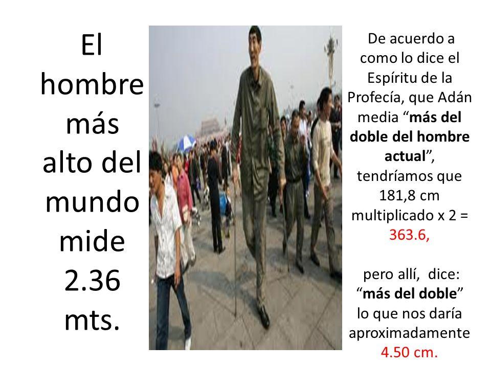 El hombre más alto del mundo mide 2.36 mts.