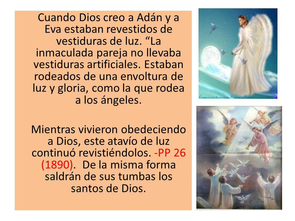 Cuando Dios creo a Adán y a Eva estaban revestidos de vestiduras de luz. La inmaculada pareja no llevaba vestiduras artificiales. Estaban rodeados de una envoltura de luz y gloria, como la que rodea a los ángeles.
