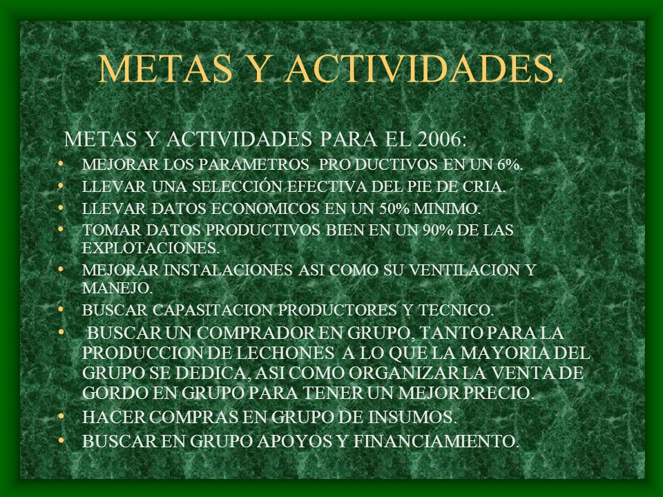 METAS Y ACTIVIDADES. METAS Y ACTIVIDADES PARA EL 2006: