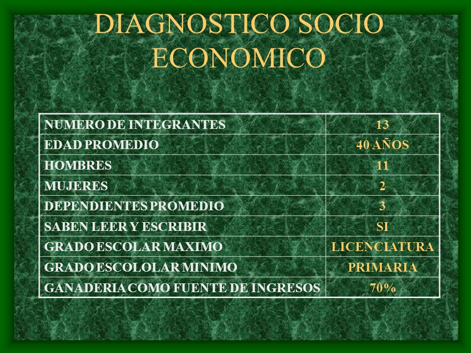 DIAGNOSTICO SOCIO ECONOMICO