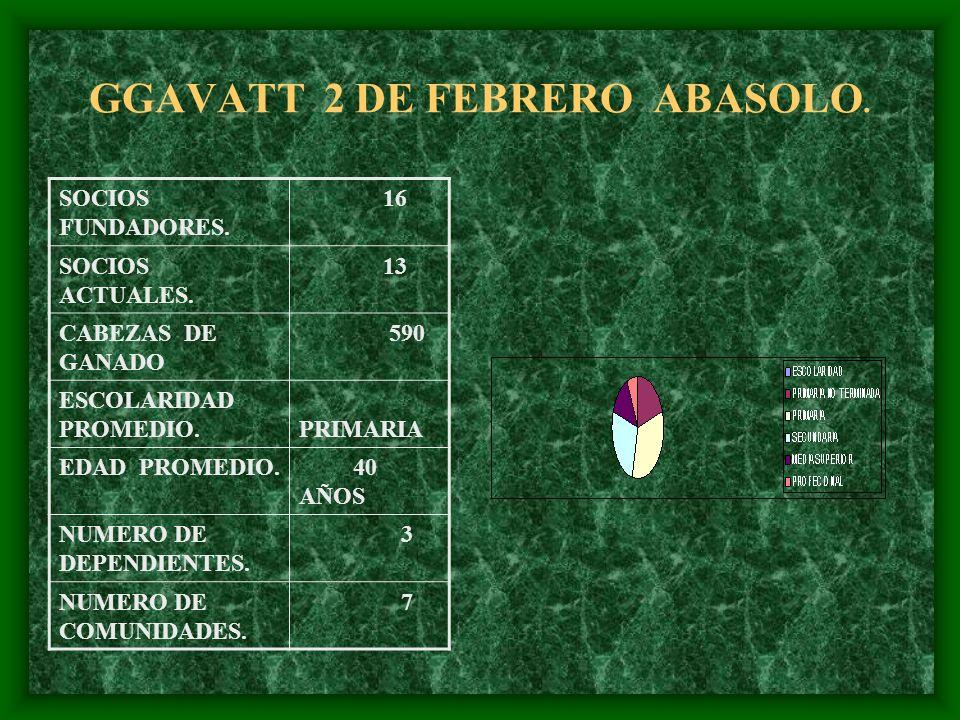 GGAVATT 2 DE FEBRERO ABASOLO.