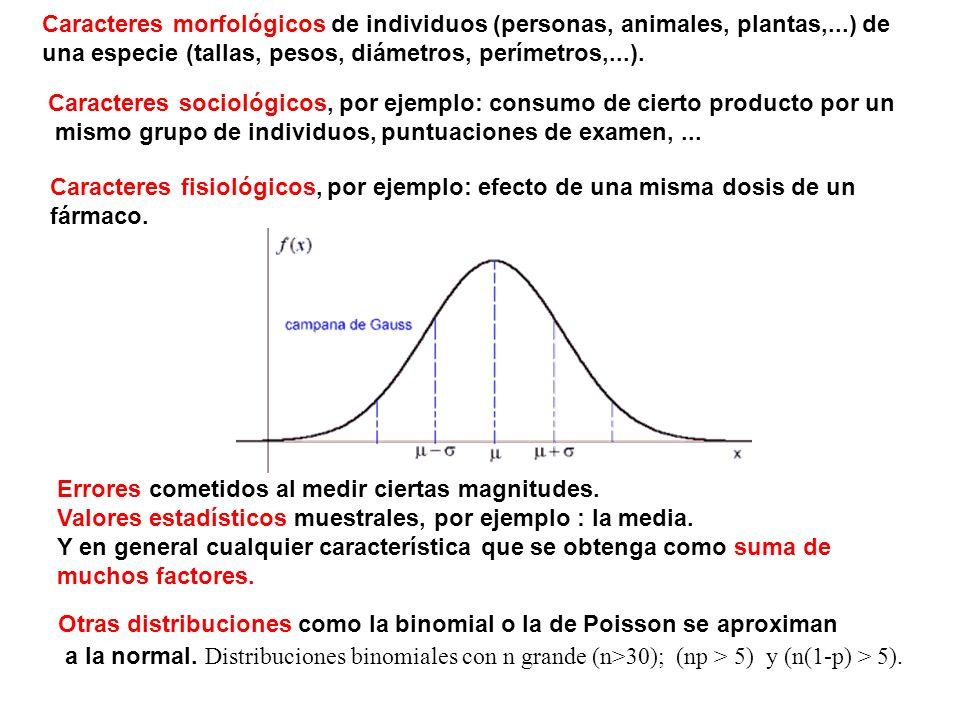 Caracteres morfológicos de individuos (personas, animales, plantas,