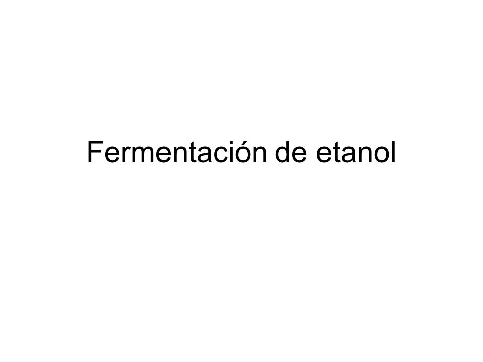 Fermentación de etanol