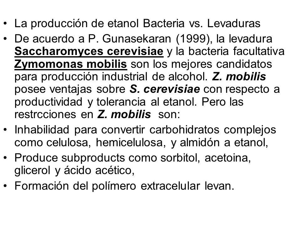 La producción de etanol Bacteria vs. Levaduras