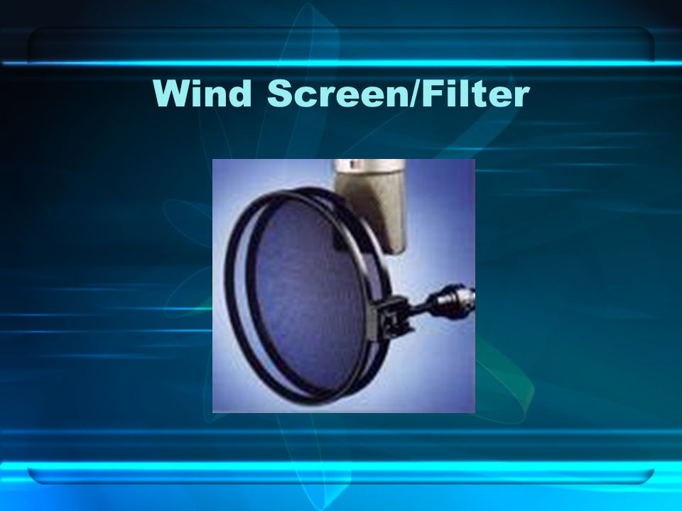 Wind Screen/Filter