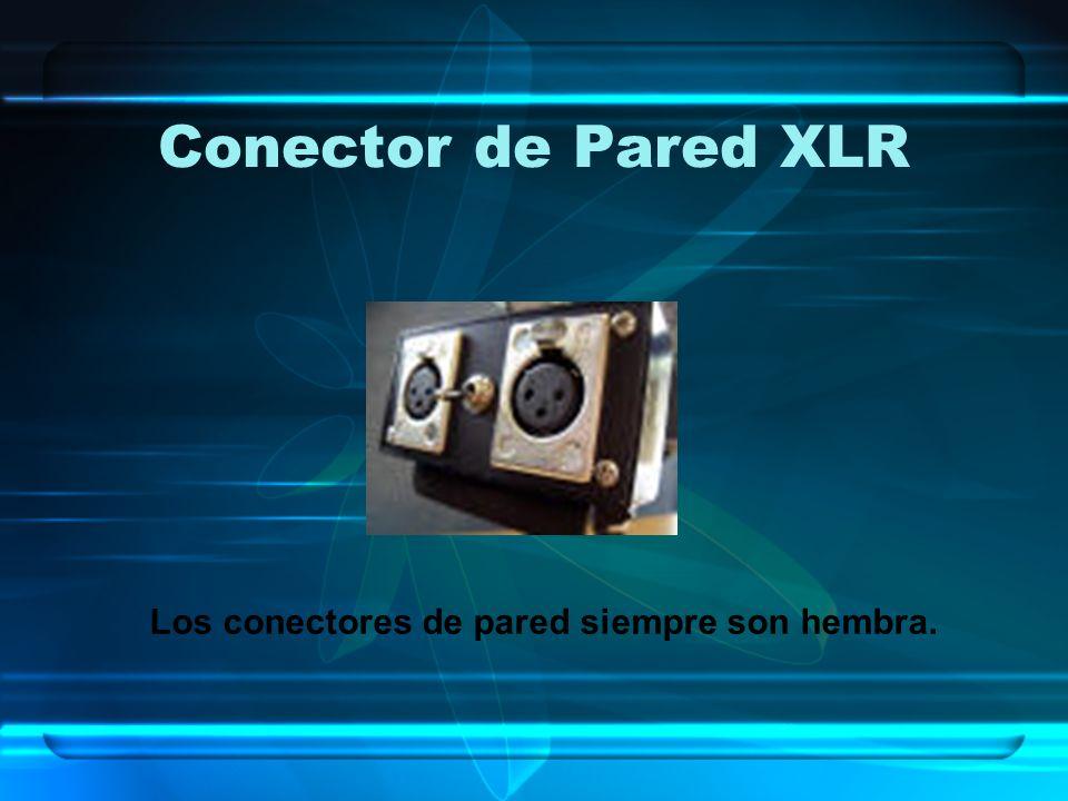 Conector de Pared XLR Los conectores de pared siempre son hembra.