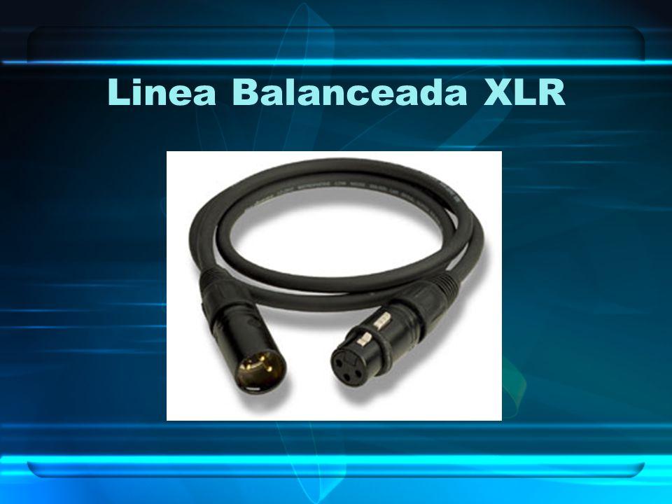 Linea Balanceada XLR