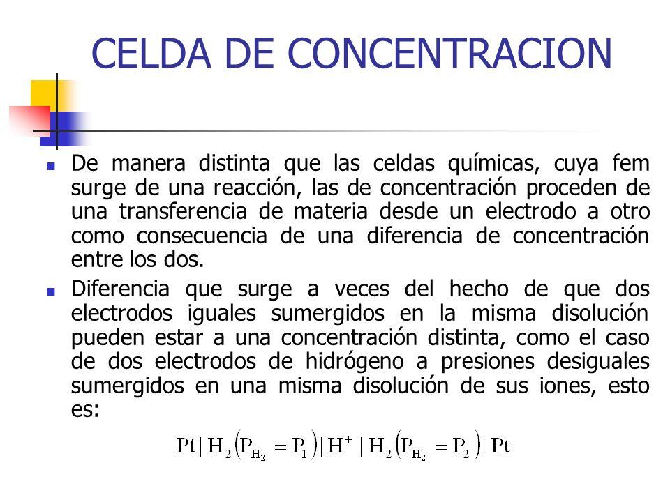CELDA DE CONCENTRACION
