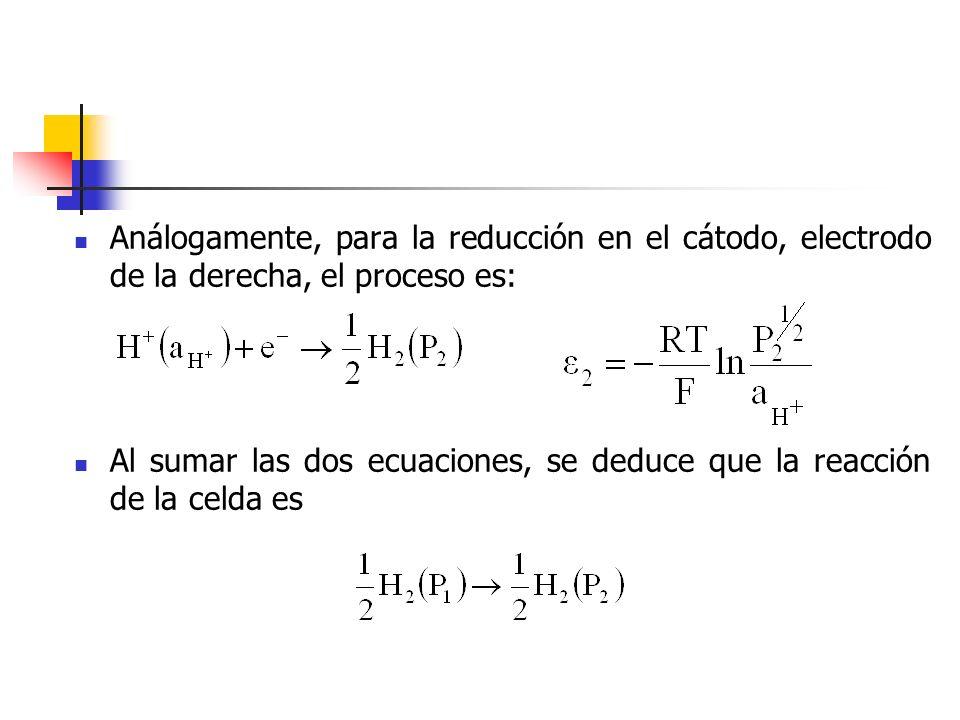 Análogamente, para la reducción en el cátodo, electrodo de la derecha, el proceso es: