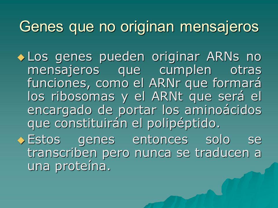 Genes que no originan mensajeros