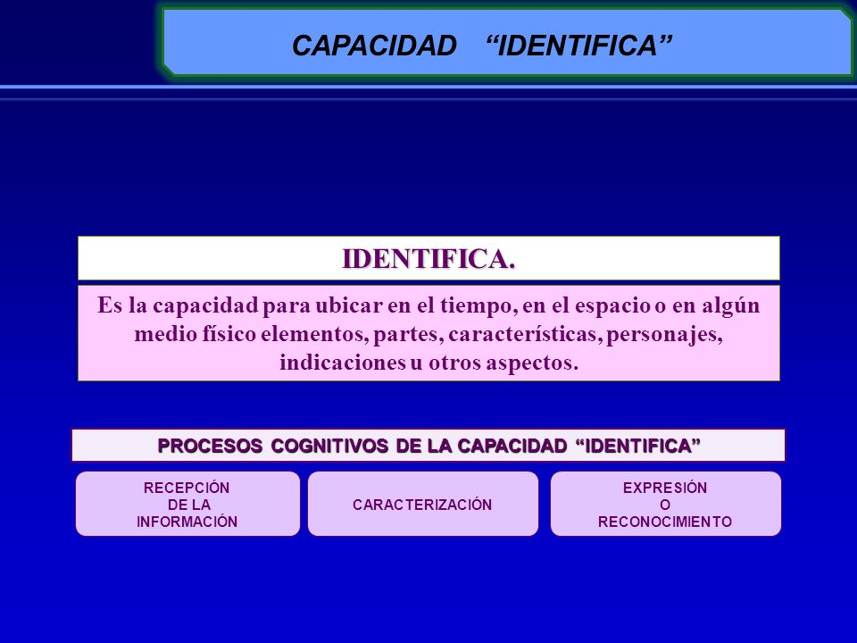 CAPACIDAD IDENTIFICA