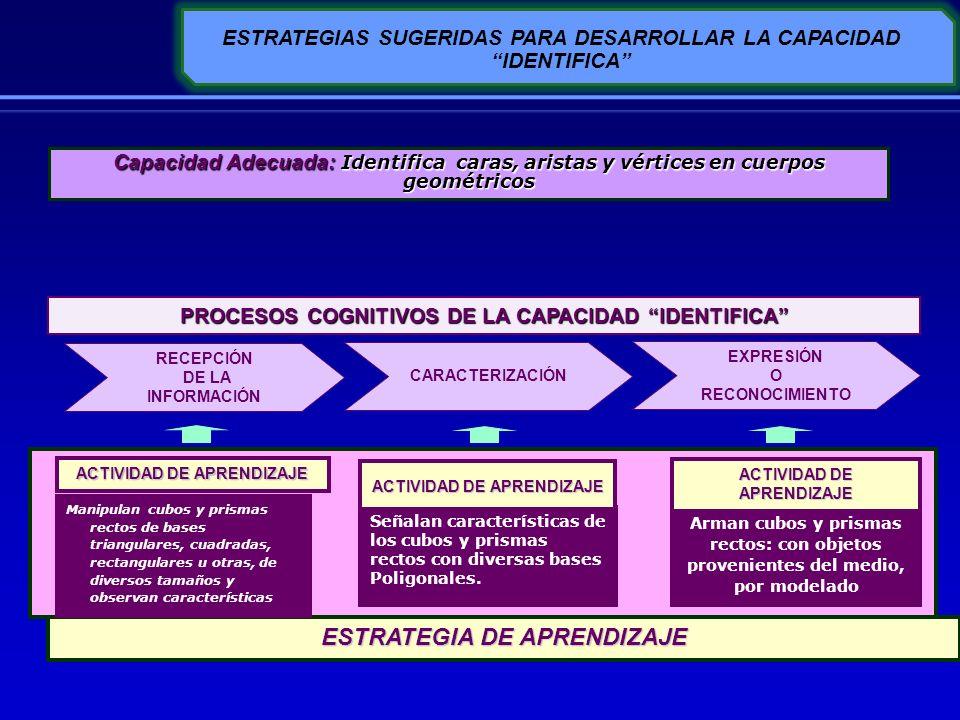 ESTRATEGIA DE APRENDIZAJE