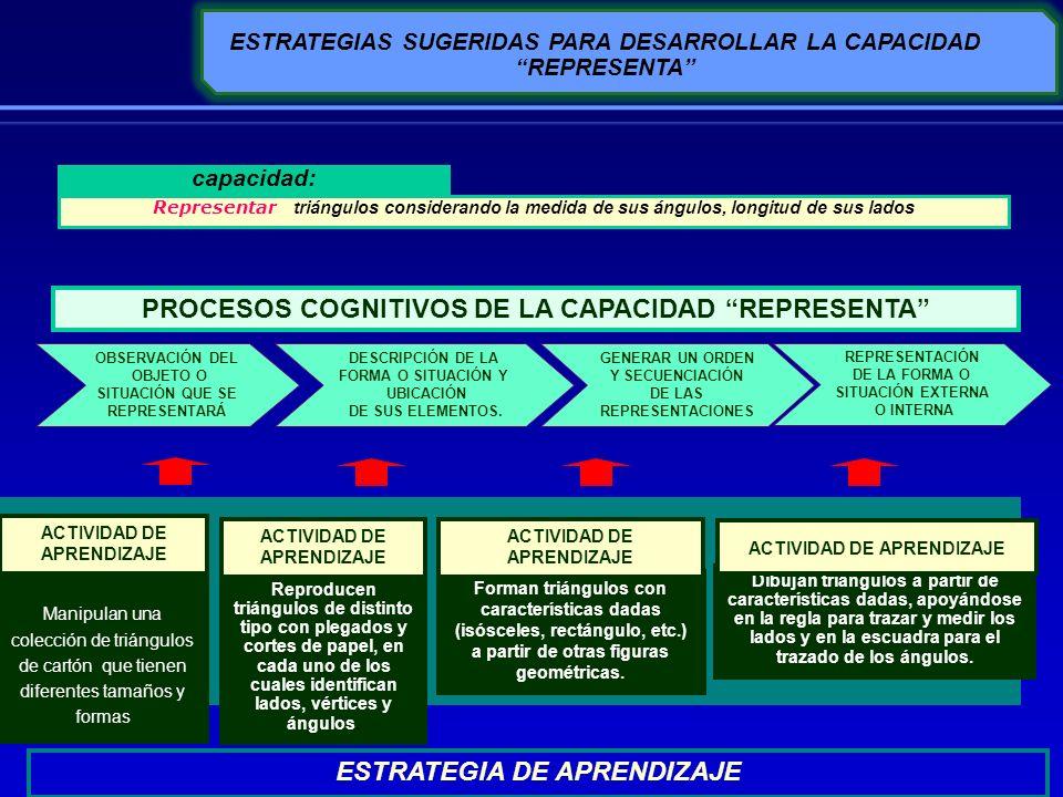 PROCESOS COGNITIVOS DE LA CAPACIDAD REPRESENTA