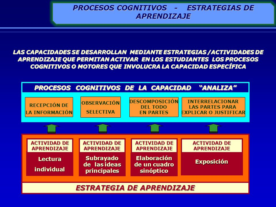PROCESOS COGNITIVOS - ESTRATEGIAS DE APRENDIZAJE