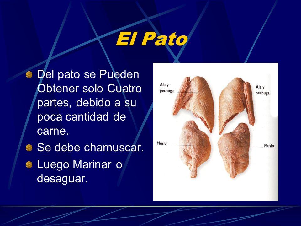 El PatoDel pato se Pueden Obtener solo Cuatro partes, debido a su poca cantidad de carne. Se debe chamuscar.