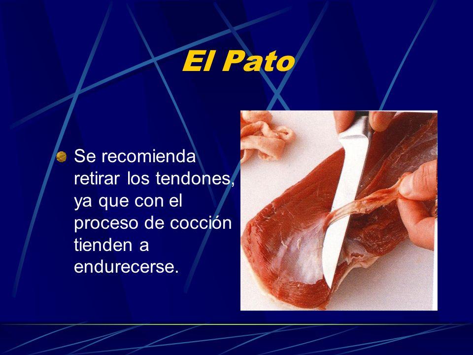 El Pato Se recomienda retirar los tendones, ya que con el proceso de cocción tienden a endurecerse.