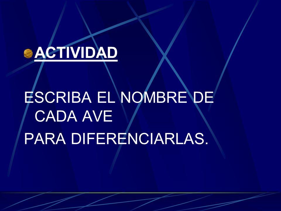 ACTIVIDAD ESCRIBA EL NOMBRE DE CADA AVE PARA DIFERENCIARLAS.