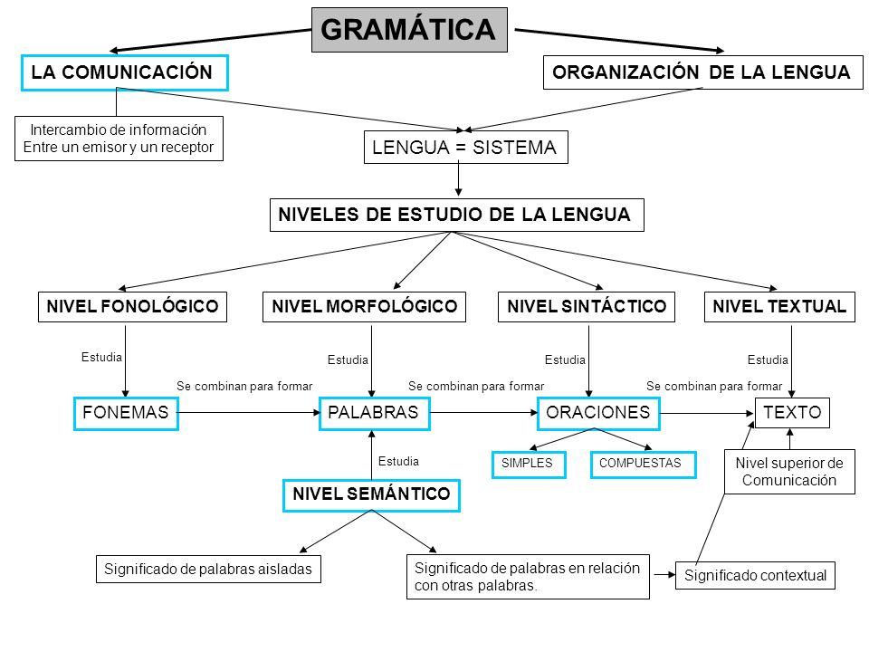 GRAMÁTICA LA COMUNICACIÓN ORGANIZACIÓN DE LA LENGUA LENGUA = SISTEMA