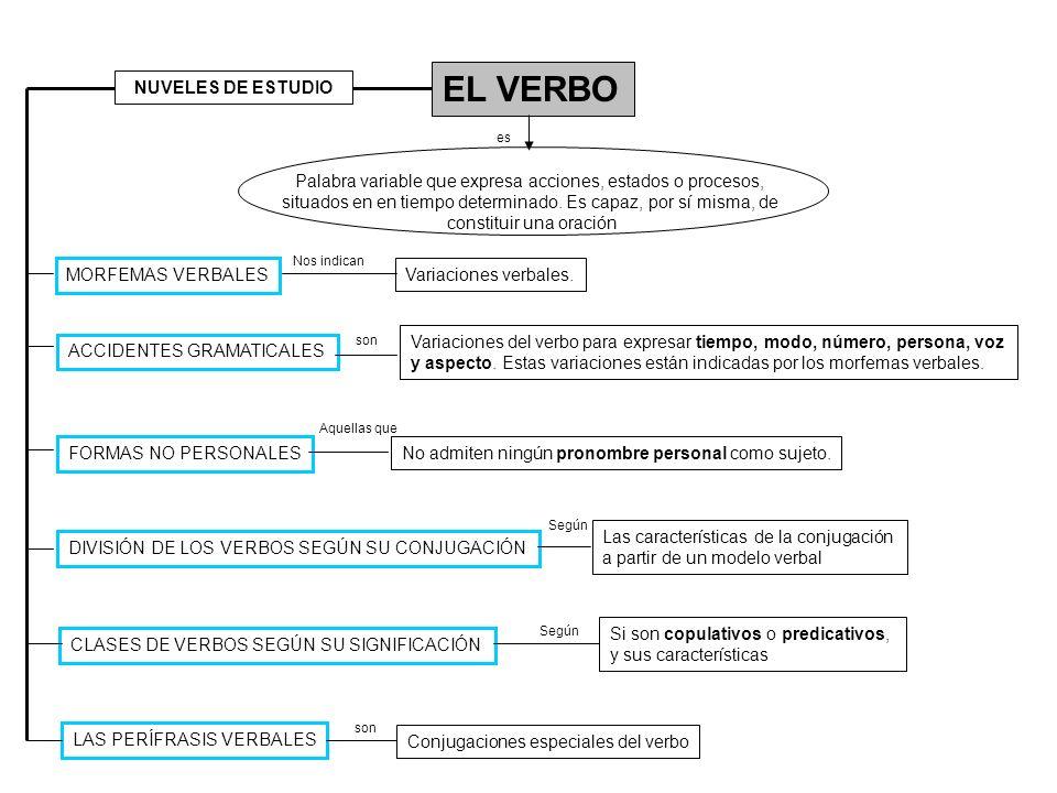 EL VERBO NUVELES DE ESTUDIO