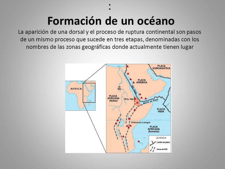 : Formación de un océano La aparición de una dorsal y el proceso de ruptura continental son pasos de un mismo proceso que sucede en tres etapas, denominadas con los nombres de las zonas geográficas donde actualmente tienen lugar