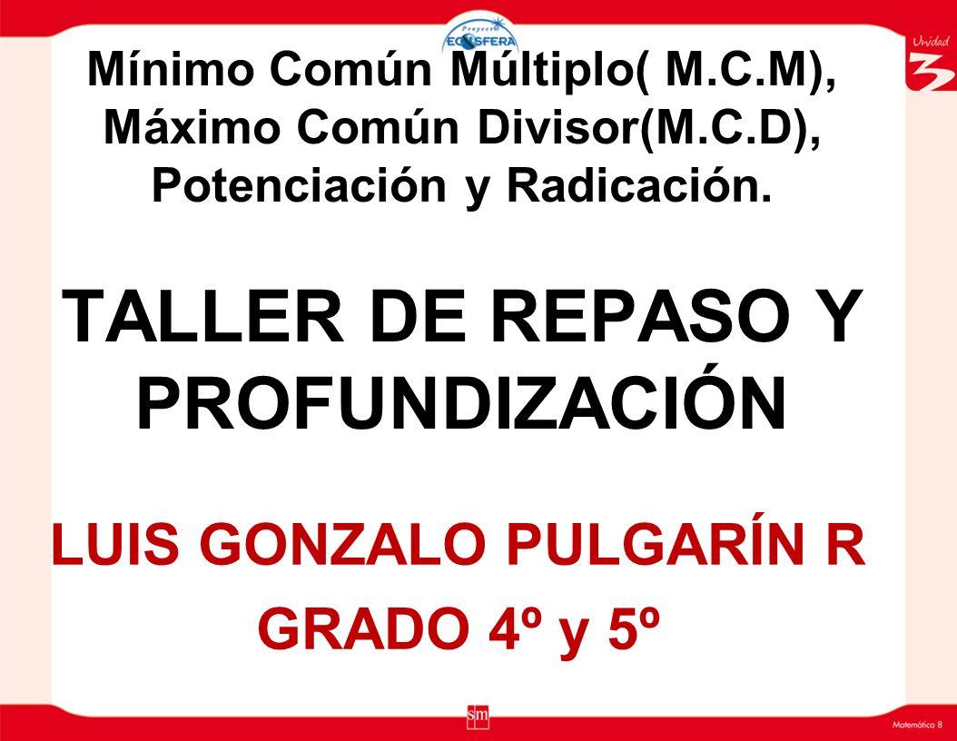 LUIS GONZALO PULGARÍN R GRADO 4º y 5º