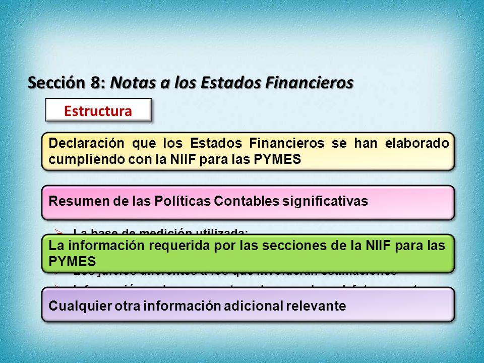 Sección 8: Notas a los Estados Financieros