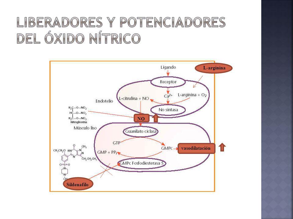 Hipertensión PULMONAR EN PEDIATRIA - ppt descargar