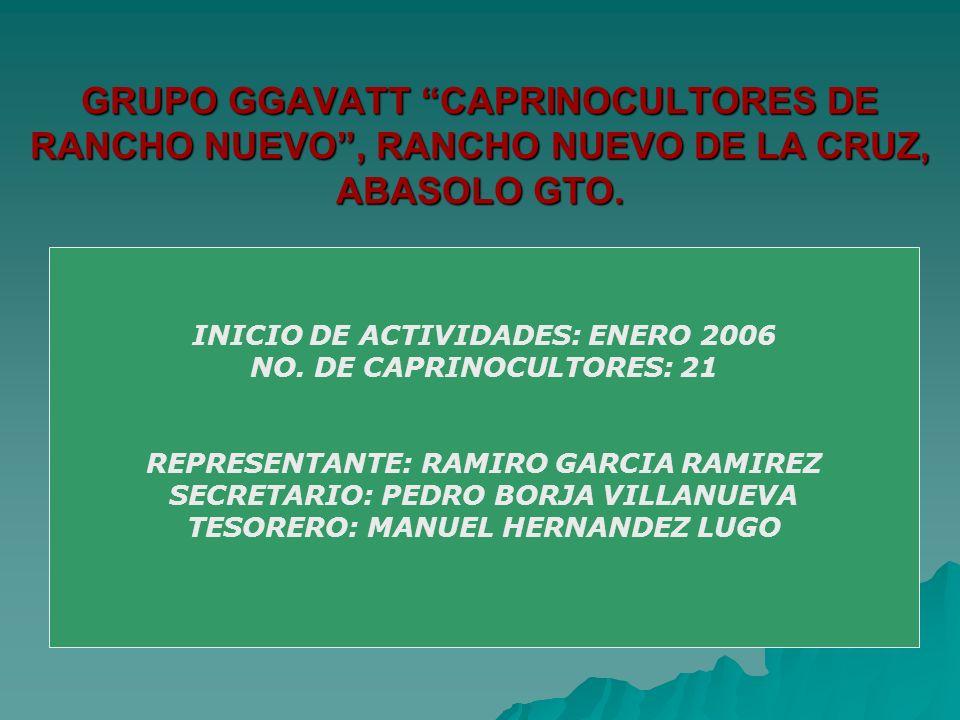 GRUPO GGAVATT CAPRINOCULTORES DE RANCHO NUEVO , RANCHO NUEVO DE LA CRUZ, ABASOLO GTO.