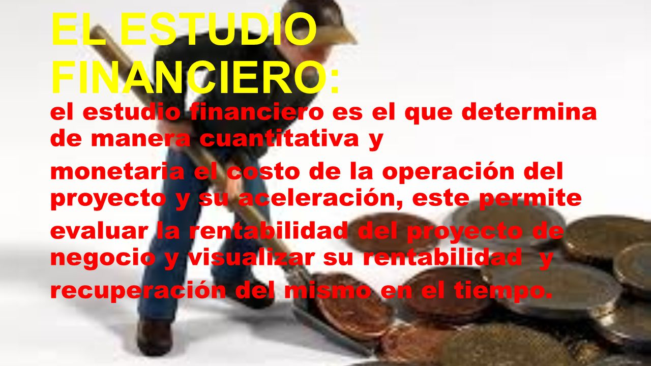 EL ESTUDIO FINANCIERO: