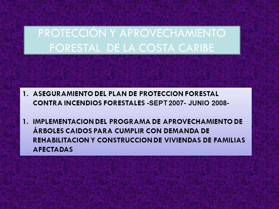 PROTECCIÓN Y APROVECHAMIENTO FORESTAL DE LA COSTA CARIBE
