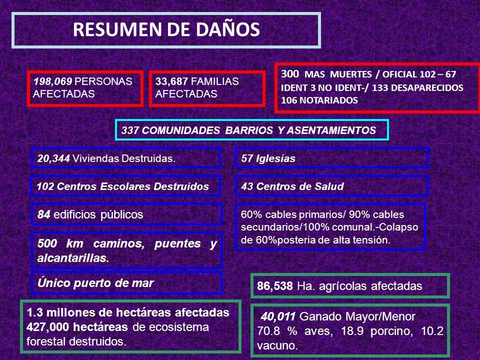 RESUMEN DE DAÑOS 300 MAS MUERTES / OFICIAL 102 – 67 IDENT 3 NO IDENT-/ 133 DESAPARECIDOS 106 NOTARIADOS.