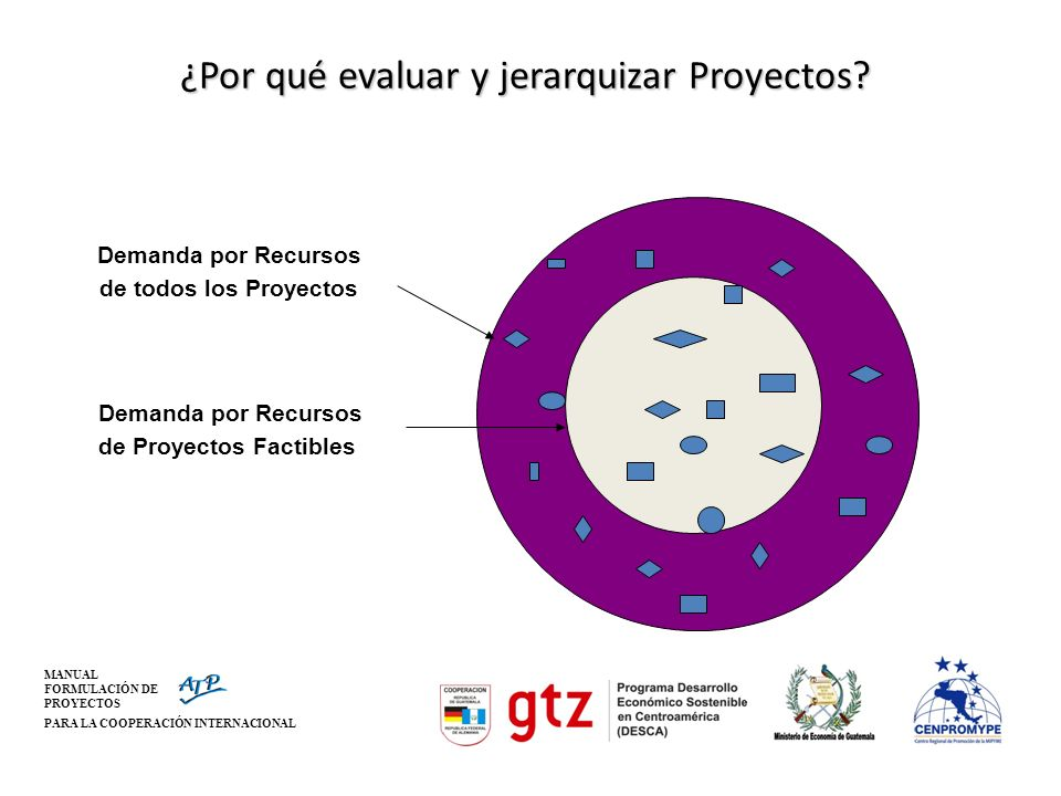 ¿Por qué evaluar y jerarquizar Proyectos