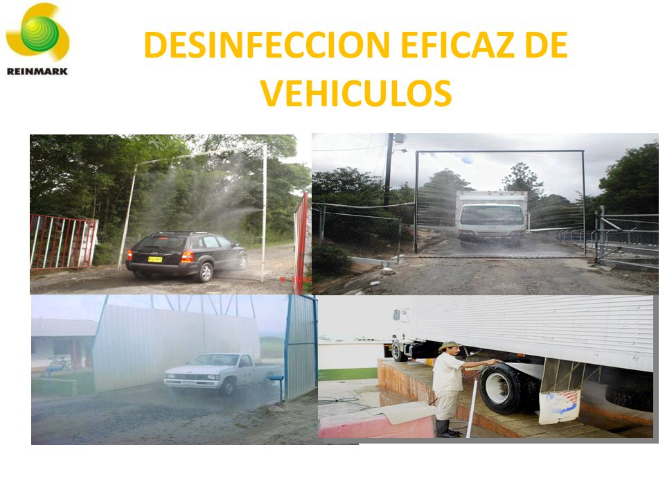 DESINFECCION EFICAZ DE VEHICULOS