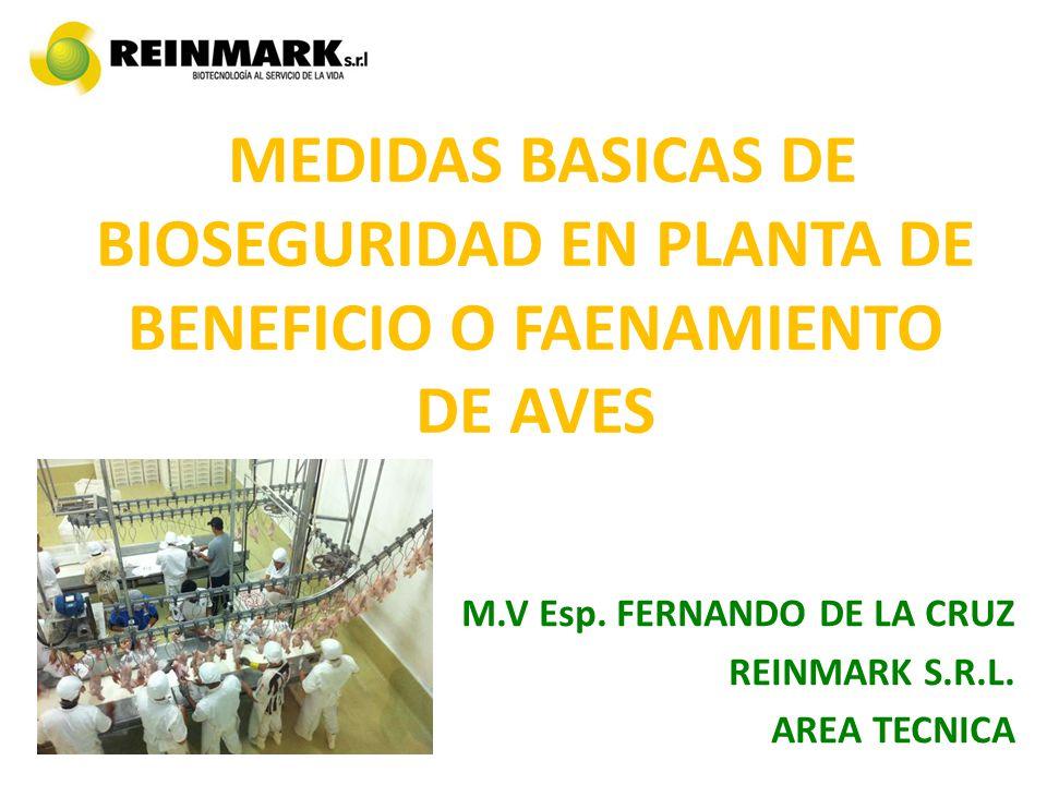 M.V Esp. FERNANDO DE LA CRUZ REINMARK S.R.L. AREA TECNICA