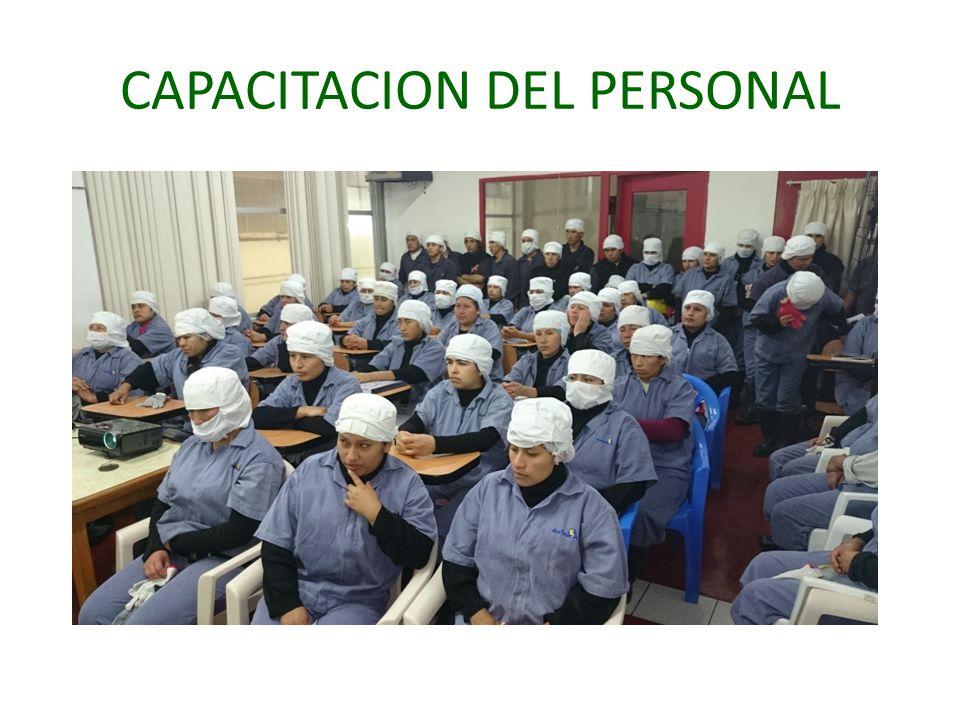 CAPACITACION DEL PERSONAL