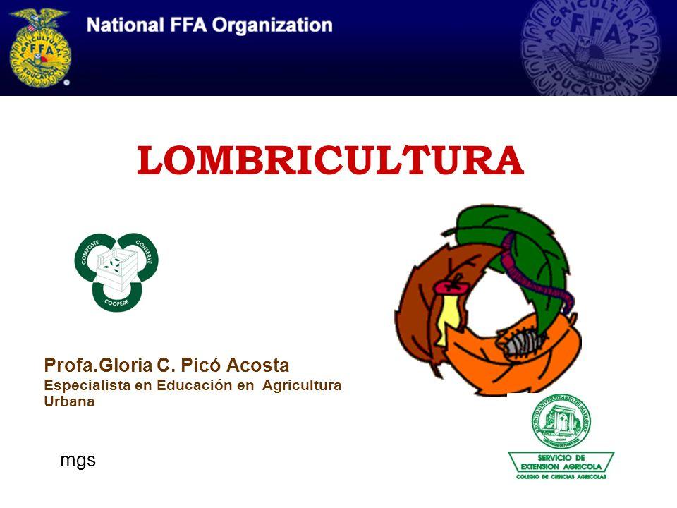 LOMBRICULTURA Profa.Gloria C. Picó Acosta Especialista en Educación en Agricultura Urbana.