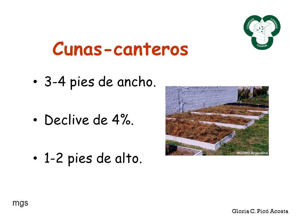 Cunas-canteros 3-4 pies de ancho. Declive de 4%. 1-2 pies de alto. mgs